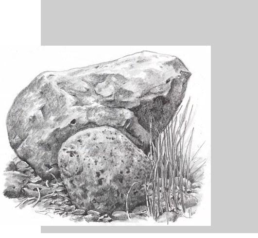 طراحی طبیعت + صخره