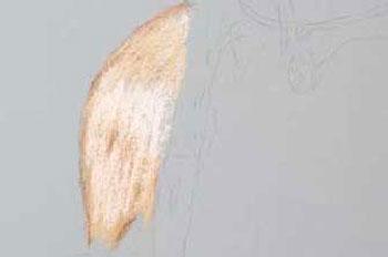 نقاشی چهره با مداد رنگی مرحله ی یک