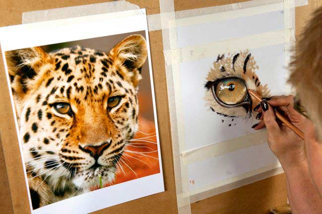 طراحی نقاشی حیوانات