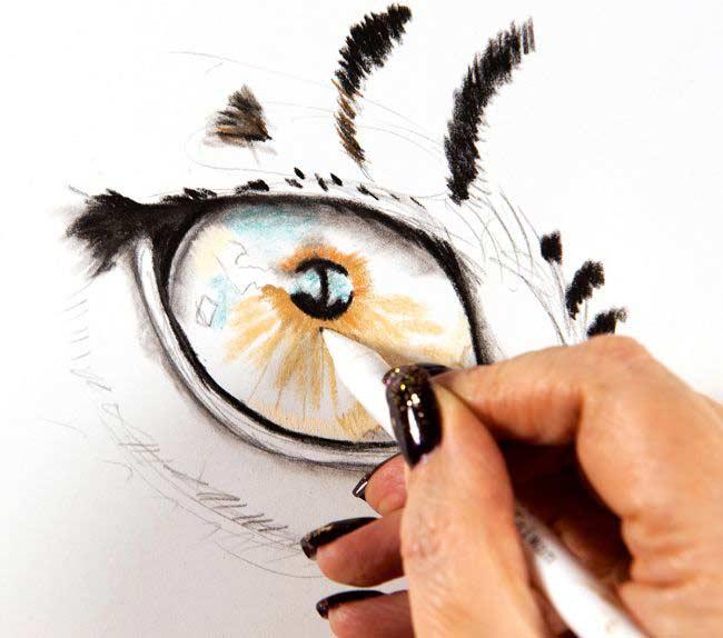 مرحله یک نقاشی حیوانات