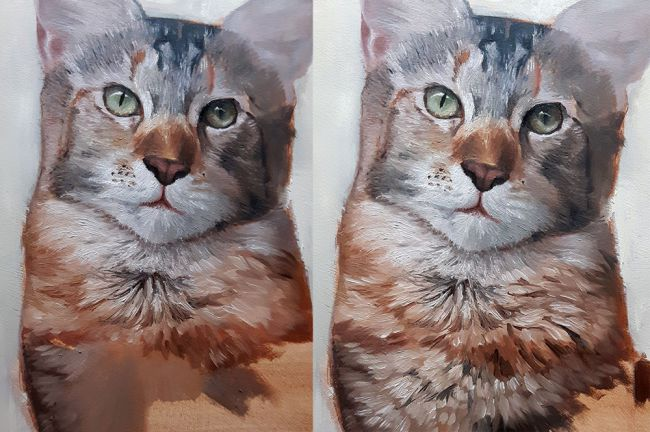 کلاس نقاشی حیوانات