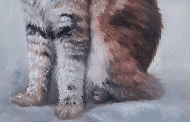 آموزش نقاشی حیوانات